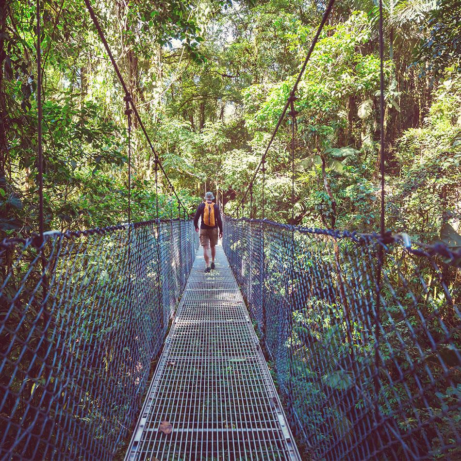 Suspension bridge in Costa Rica