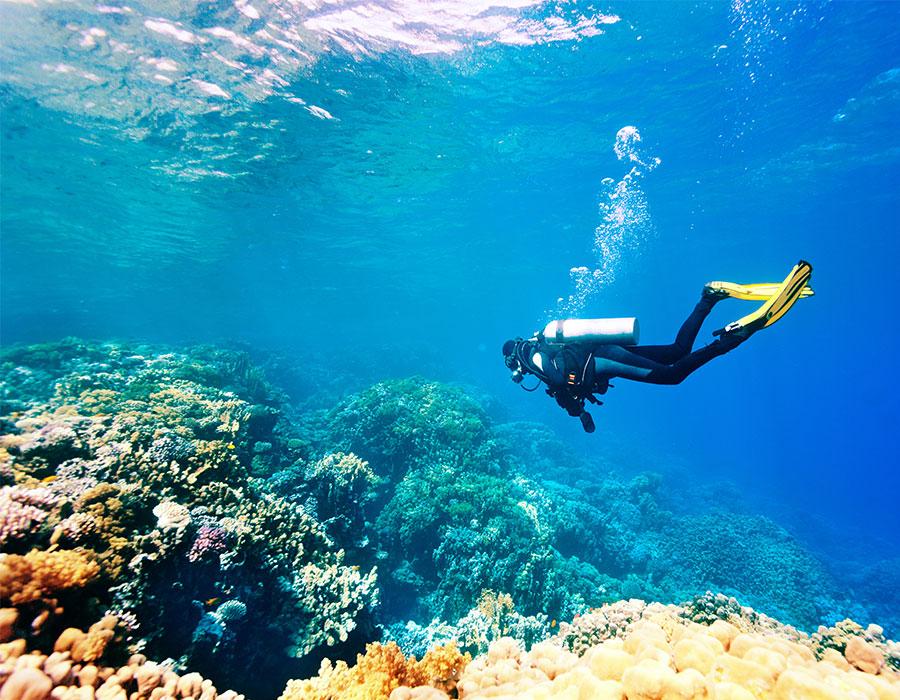 Scuba diving in Cancun Mexico