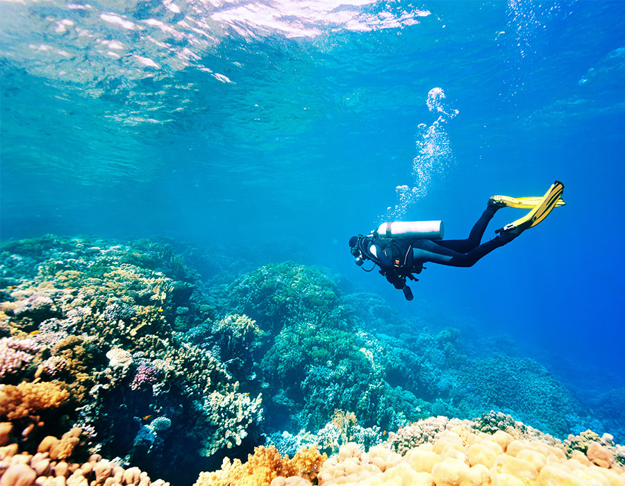 Scuba diving in the Riviera Maya