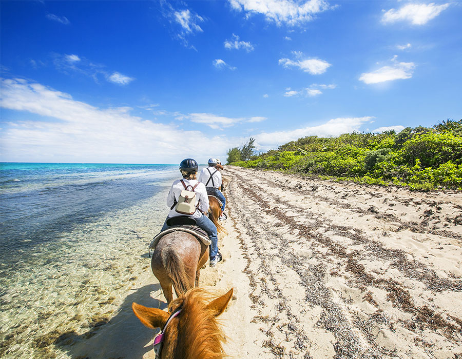 Horseback riding in the Grand Cayman Islands